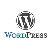 Word Press Developer